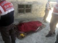 MEHMET ŞAHIN - İki Gün Önce Otomobilin Çarptığı Yaşlı Adam Evinde Ölü Bulundu