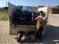 İNCİ KEFALİ - Jandarma, Ahlat'ta 1,5 Ton Kaçak Balık Yakaladı