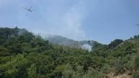 KAZDAĞLARI - Kazdağları'nda Yangın