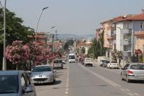 LALE FESTİVALİ - Şehir Çiçek Açtı