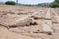 Yenipazar'da Çiftçinin Zararı Tespit Edilecek