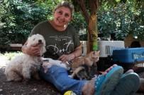 SOKAK KEDİSİ - Evinde Yüzü Aşkın Kedi Ve Köpek Besleyen Kadın Mahkemelik Oldu