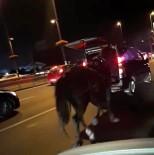 ŞIRINEVLER - Vicdansız Sürücü Arabasının Arkasına Bağladığı Atı Peşinden Koşturdu