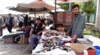 ALABALIK - Ramazan Geldi, Balık Fiyatları Düştü