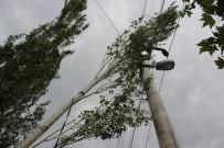 BAĞBAŞı - Şiddetli Rüzgar Ağaçları Yerinden Söktü