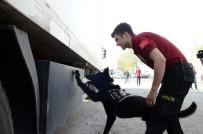 BAŞSAVCıLıĞı - Uyuşturucudan Tutuklanan Şüpheli Sayısı Yüzde 108 Arttı