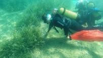 İNŞAAT MALZEMESİ - Denizden 6 Ton Çöp Çıktı