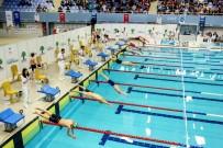 TÜRKİYE YÜZME FEDERASYONU - Havuzdan 49 Madalya Çıktı