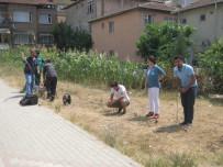 JEOLOJI - İzmit Belediyesi'nden İnşaatlara Sıkı Takip