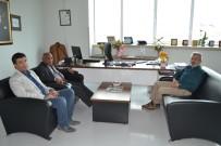 SAĞLIK SEKTÖRÜ - Kongo Büyükelçisi'nden Medicana'ya Ziyaret