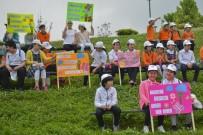 MALTEPE BELEDİYESİ - Maltepe'de 5 Haziran Dünya Çevre Günü Kutlandı