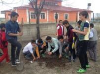 Ağrı'da Okul Bahçelerine Fidan Dikimi Yapıldı