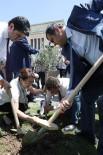 TUR YıLDıZ BIÇER - CHP Milletvekillerinden Zeytinlik Protestosu