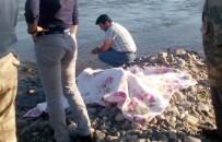 ALZHEIMER - Elazığ'da Kayıp Şahıs Ölü Bulundu
