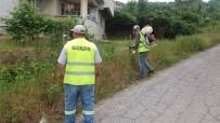 GÜLÜÇ - Gülüç Belediyesi Haşere İlaçlaması Yaptı