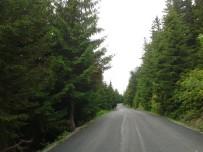 YEŞIL YOL - Yayla Yolları Yeşil Yol Projesiyle Birleştirilmeye Devam Ediyor