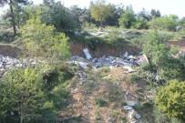 DARÜSSELAM - Yılda 12,6 Milyon İnsan, Çevre Kirliliği Nedeniyle Hayatını Kaybediyor