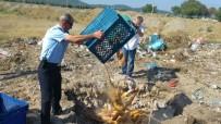 Balıkesir'de Sinek İlacı Bulaşan 250 Ekmek İmha Edildi
