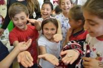 Çocuklar Böceklerden Korkmamayı Öğrendi