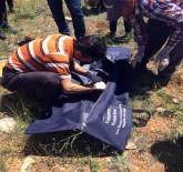 Ölen Bebeği Dağlık Araziye Gömmüşler