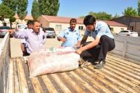 İNCİ KEFALİ - Tuşba'da Kaçak Balık Operasyonu