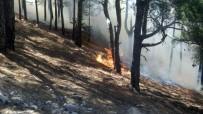 KARADERE - Anamur'daki Orman Yangını Devam Ediyor, Evler Boşaltıldı