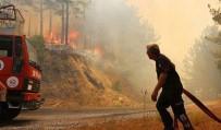 ŞİDDETLİ RÜZGAR - Anamur'daki Orman Yangını