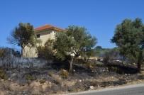 ELEKTRİK TRAFOSU - Didim'de Makilik Yangını Korkuttu