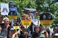 HAYVAN SEVERLER - Hayvan Severler Sokak Hayvanlar İçin Eylem Yaptı