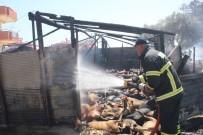 NAZMI GÜNLÜ - Manavgat'ta çıkan yangında 550'ye yakın hayvan telef oldu