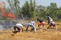 ZEYTİN AĞACI - Manavgat'ta Kopan Yüksek Gerilim Hattı Yangın Çıkardı