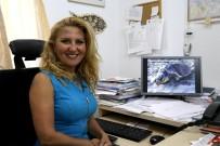 SEMPATIK - Deniz Kaplumbağalarının Doğasını İnsanların Yanlış Yöntemleri Bozuyor