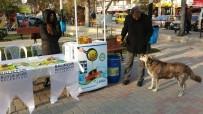 MUHTARLIKLAR - Büyükşehir'den 'Sakın Dökmeyin' Kampanyası