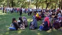 FOLKLOR - Gölyakalılar Festivalde Buluştu