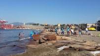 MOLDOVA - Kıyı Suntalardan Temizlendi