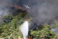 ORMAN İŞÇİSİ - Otobüsten Ormana Sıçrayan Yangın Kontrol Altına Alındı