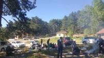 DOLULUK ORANI - Piknik Alanları Doldu Taştı