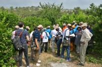 YANGIN TATBİKATI - Afrikalı Ormancılara Türkiye'deki Ormancılık Faaliyetleri Anlatıldı