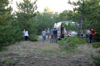 KOZALAK - Kozalak Toplamaya Giden Anne Ormanda Ölü Olarak Bulundu
