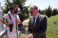 ŞEHİT AİLELERİ DERNEĞİ - Vali Özdemir Şehidin Mezarı Başında Gözyaşlarını Tutamadı
