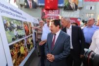 YUSUF ZİYA ÇELİKKAYA - Adapazarı Belediyesi 15 Temmuz Sergisi Açtı