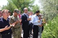 AHMET ADANUR - Cizre'de Şehitler Mezarları Başında Anıldı