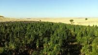 Diyarbakır'da Mühimmat Ve Uyuşturucu Ele Geçirildi