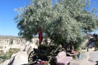ERCIYES - Erciyes Dağını Kapadokya'dan İzliyorlar