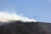 ANTAKYA - Hatay'da 25 Hektar Alan Yandı