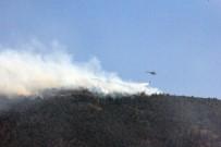 ANTAKYA - Hatay'daki Orman Yangını Kontrol Altına Alındı