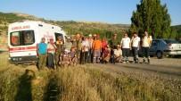 DEĞIRMENBAŞı - Karaman'da Yaban Domuzlarına Sürek Avı