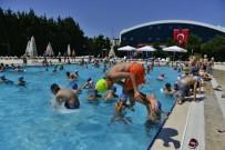 OTOMASYON - Havuzdaki Tehlikeye Dikkat