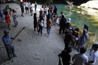 ÜNİVERSİTE ÖĞRENCİSİ - Susuz Kalan Düden Şelalesi'ne Ziyaretçi Akını