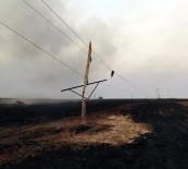 ELEKTRİK DİREĞİ - Anız Yangınında 76 Elektrik Direği Yandı